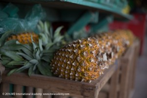 MEI International Academy Study Abroad Pineapples