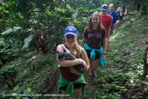 2016-08-07-mei-spring-semester-monteverde-3103-mei-international-academy-travel-study-study-abroad-cats